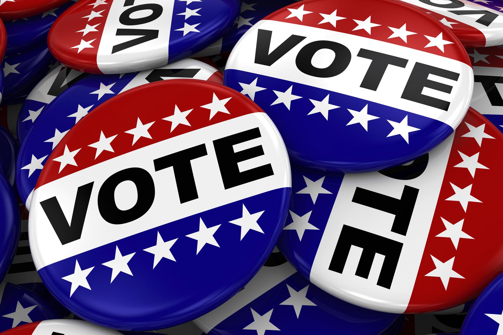 where to vote - photo #4
